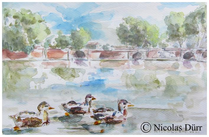 Les canards et les 3 ponts