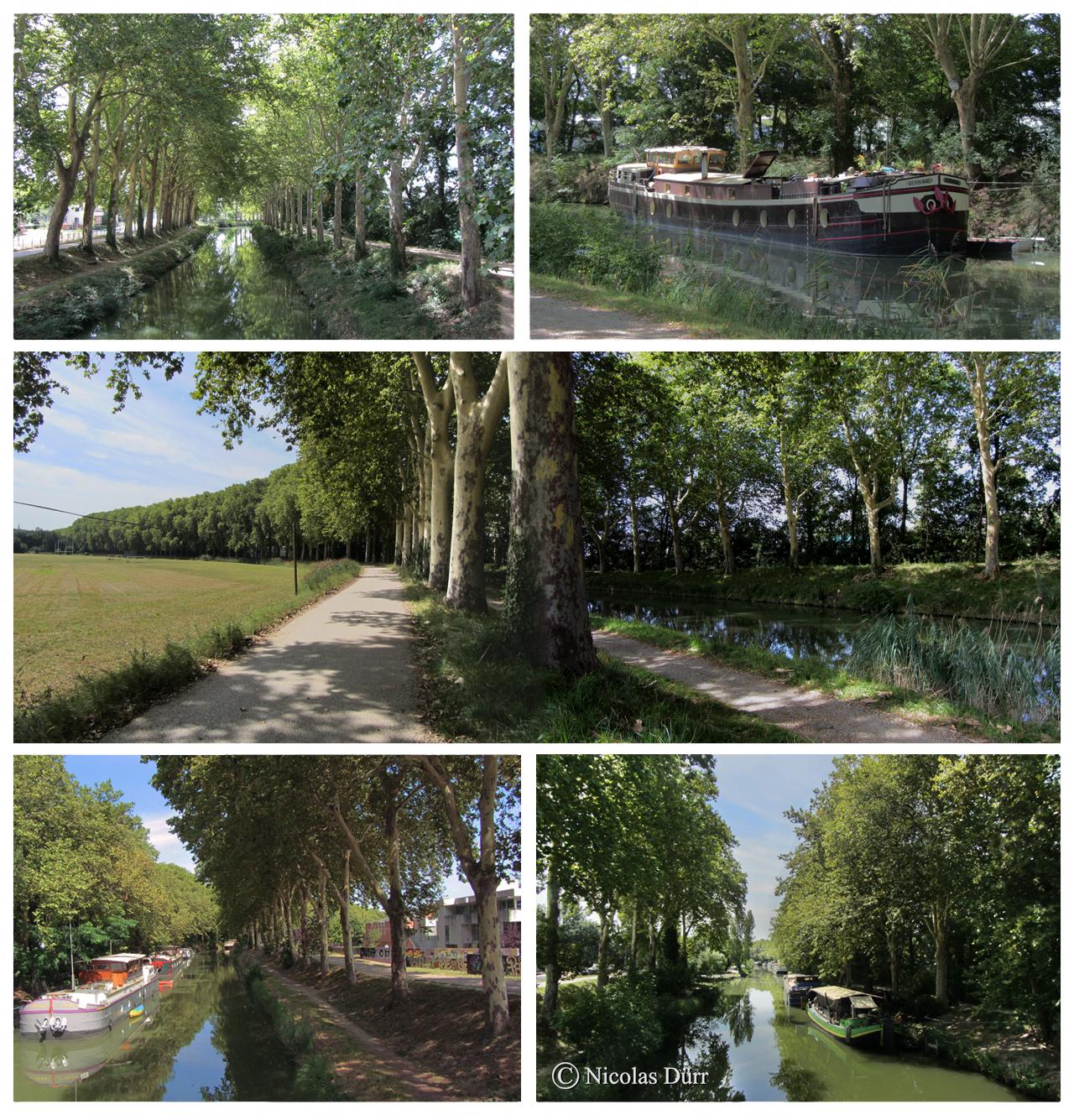 Le long du bief Bayard. Nous sommes déjà presqu'à la campagne (en données 2012), mais toujours sur la commune de Toulouse.