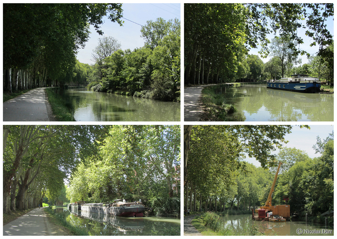 Direction le Lauragais en find e parcours des 12 km 177 du bief Bayard, le 4ème bief du Canal du Midi.