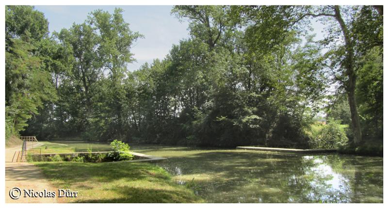 Le bief d'Ayguevives au niveau de l'aqueduc éponyme, 1687, à 2 arches, servant aussi de déversoir de l'excédent d'eau du canal. enjambant le ruisseau de l'Amadou