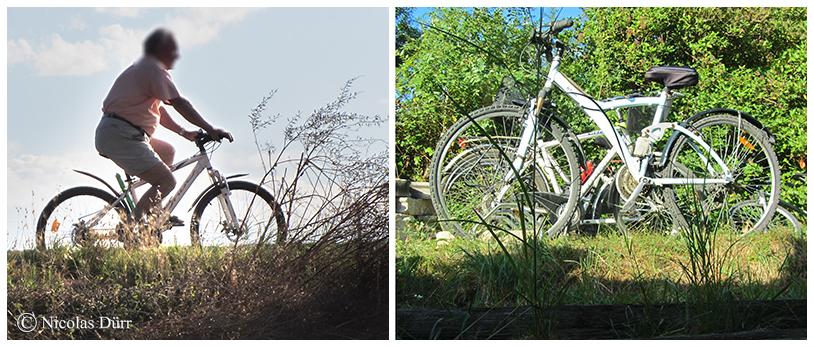 """Les vélos à proximité de la péniche """"Mirage"""""""
