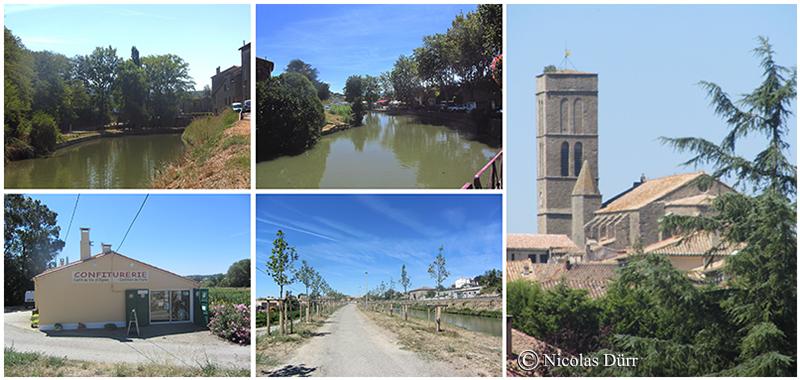 Le Canal du Midi à Trèbes (1)