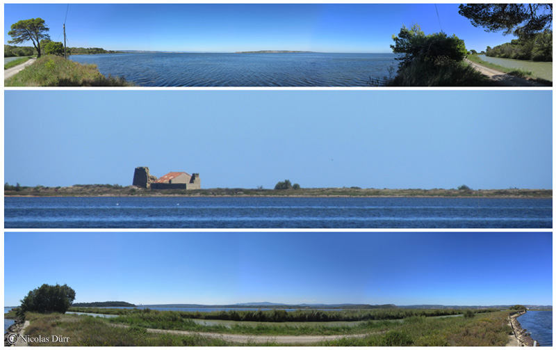 Panoramiques sur l'étang de l'Ayrolle