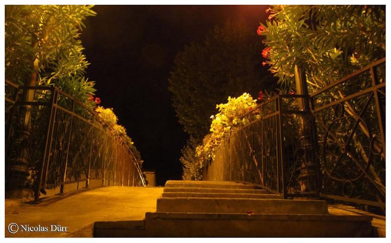 Nocturne, détail sur le Pont Alsace-Lorraine, 2015