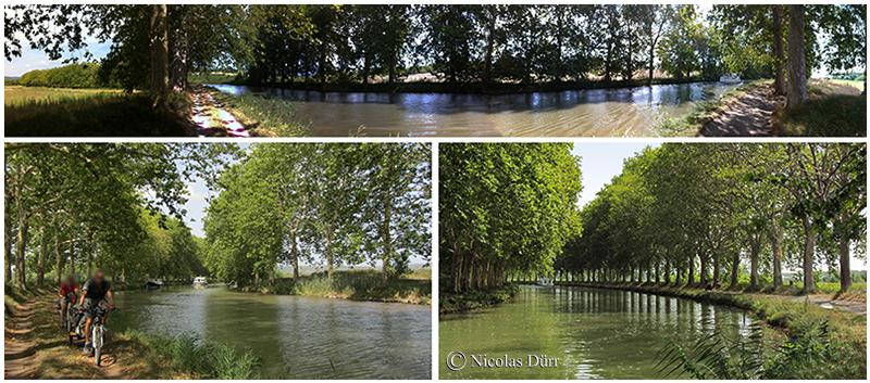 Le Canal du Midi au carrefour de 3 pays, 2012