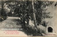 Saint Ferréol - Entrées Des Voûtes