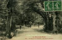 Saint Ferréol - Le Parc
