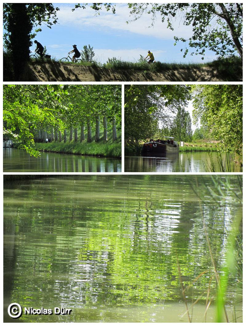 Le Canal aux environs de Capestang